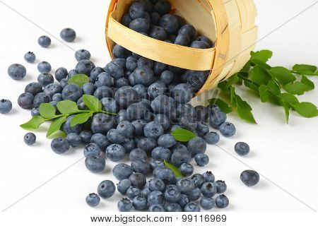 detail of the blueberries spilled from the basket