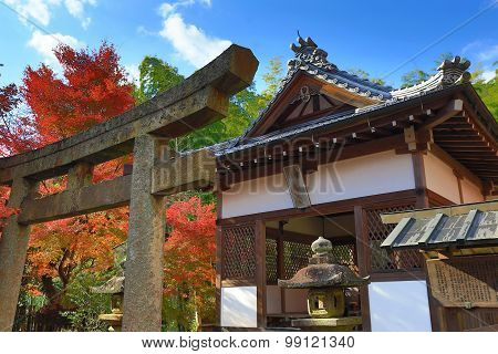 Fall Season Of Jojakukoji Temple