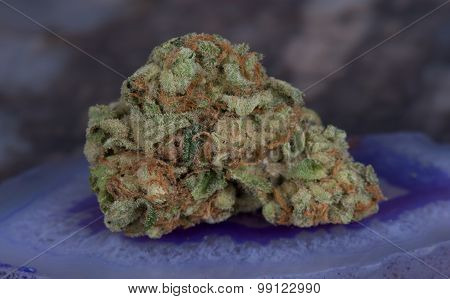 Medibud medicinal medical marijuana hybrid