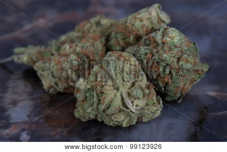 Medibud medicinal medical marijuana