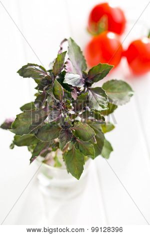 bunch of basil and tomatoes on white table
