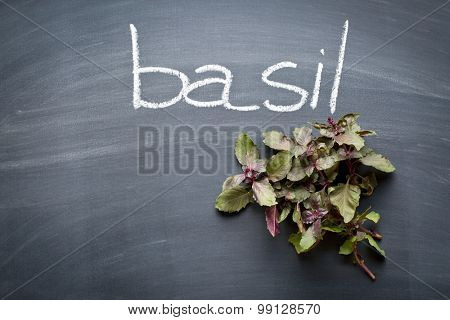bunch of basil on chalkboard