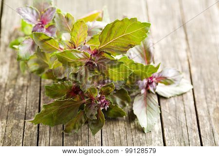 bunch of basil on old wooden table