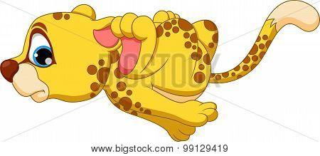 Cute baby cheetah running