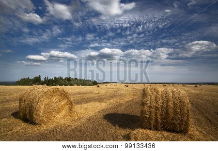Rolls of hay in a field with islands of pine forests and   beautiful clouds