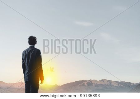 Rear view of businessman looking at sunset