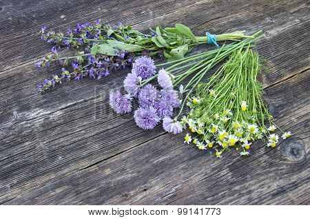 Medical Herbs Binch On Old Wooden Background
