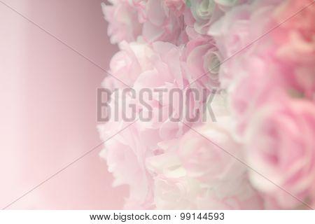 Pink Rose Pastel