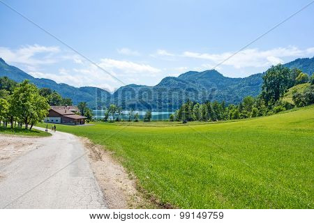 Green Rural Landscape Near Lake Attersee