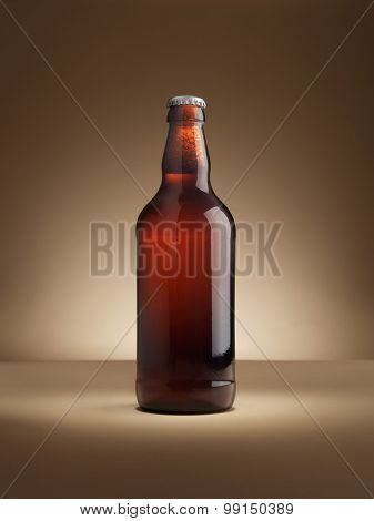 Beer Bottle Copy Space - Stock Image
