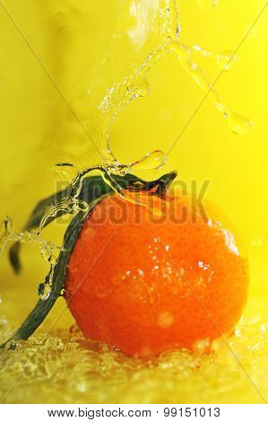 Tangerine And Water Splashes