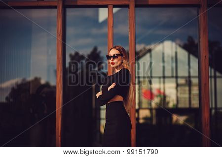 Beautiful Young Business Woman In Dress Suit Top Skirt Pose. Copy Space