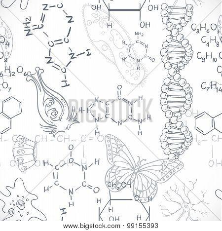 Seamless Pattern Of The Formulas On The Biology Of Doodles Isolated On White Background