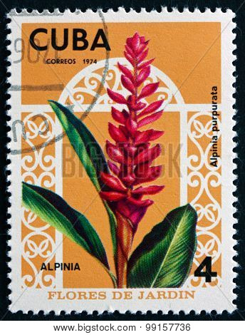 Postage Stamp Cuba 1974 Red Ginger, Flowering Plant