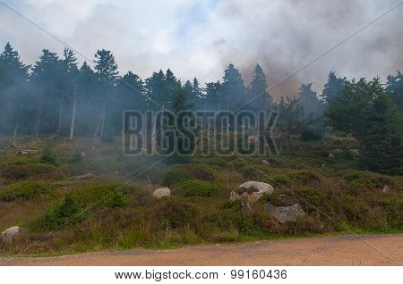 Smoke in Harz, Germany.
