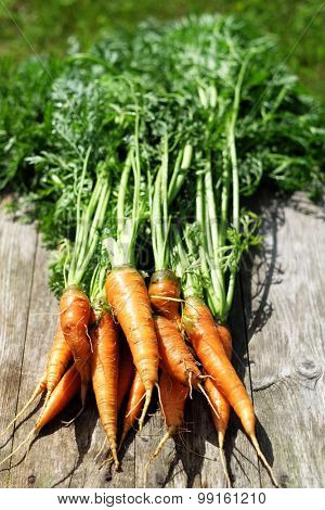 Ripe and fresh organic carrots on old wooden table