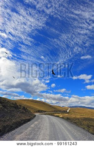 Gravel road crosses the valley national park Torres del Paine in Chile. Dreamland Patagonia