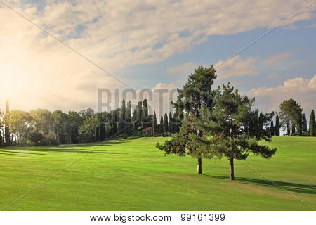 The most romantic landscape park a garden in Italy. Shining rays of evening sun sharp light charming green grassy lawns