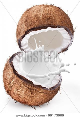 Coconut with milk splash inside it isolated on a white background.