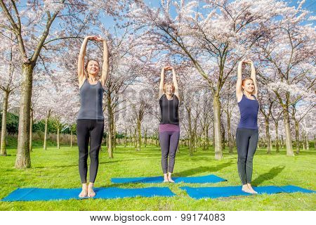 Three young women doing morning exercise in a spring blooming park