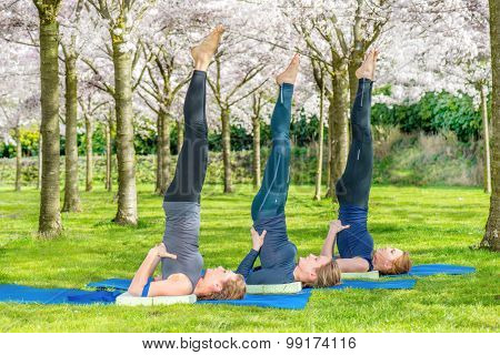 Yoga group practicing salamba sarvangasana (shoulder stand) in a blooming spring park