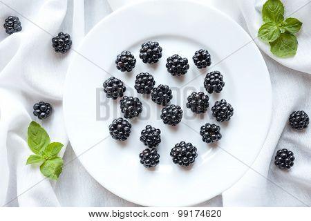Healthy organic blackberry vegetarian diet sweet snack on white plate. Vitamin nutrition.
