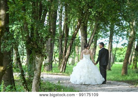 Bride And Groom Walking In Nature