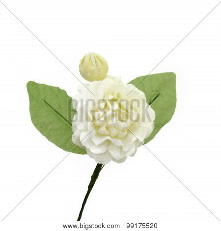 Artificial Jasmine Flowers Isolate On White