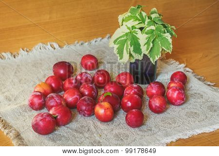 Plums Scattered On The Wooden Table
