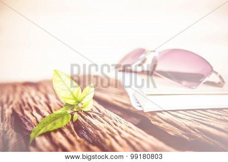 Vintage Notebook And Glasses With Leaves On Wood Background With Color Filters,  Relax Concept.