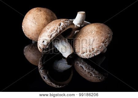 Four champignon mushrooms on black