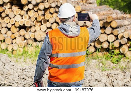 Forest officer filmed with cell phone near lumber pile