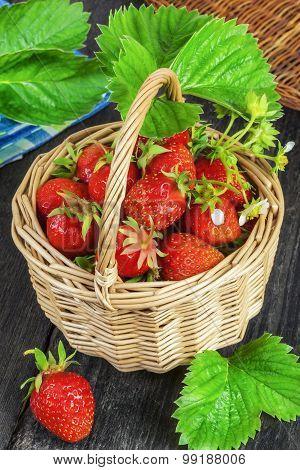 Freshly picked strawberries in basket