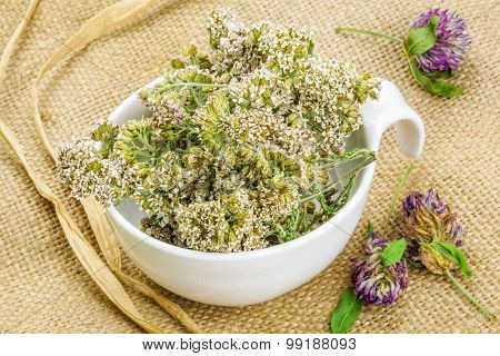 Yarrow in white bowl on rustic jute fabric