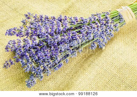 Lavender bunch on rustic jute fabric
