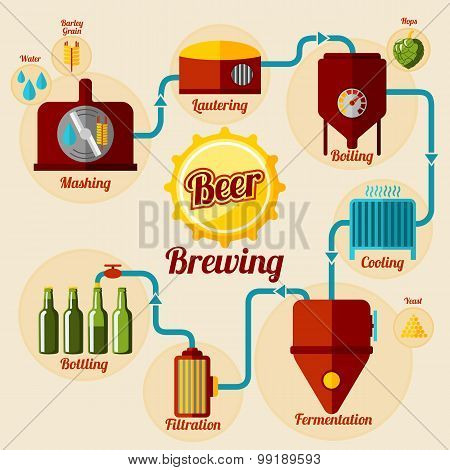 Beer brewing process infographic. In flat style. Vector