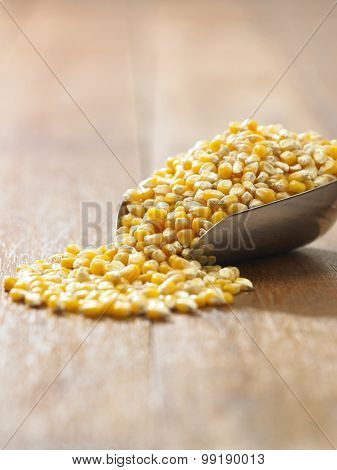 scoop of the maize corn