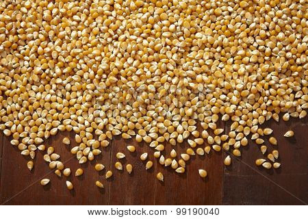 texture of the maize corn