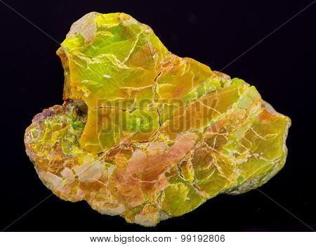 Variscite hydrated aluminium phosphate from USA. Isolated on black