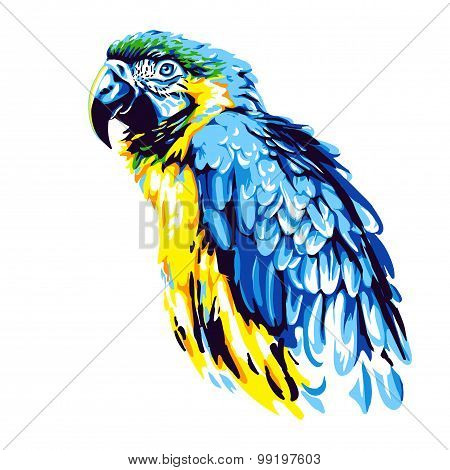 Yellow-blue parrot ara
