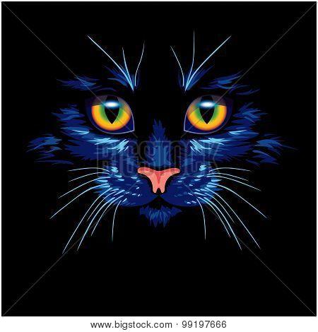 Dark blue cat with bright eyes