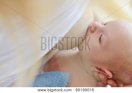 Mother Feeding   Newborn