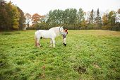 pic of shire horse  - Woman with big white shire horse in pasture - JPG