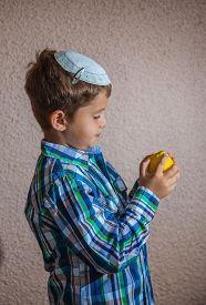 foto of sukkoth  -  Citrus  - JPG