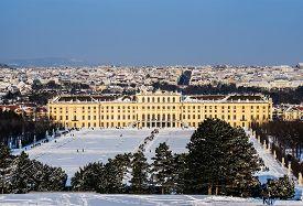 picture of schoenbrunn  - Schoenbrunn palace in sunny  - JPG