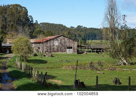 Rural Chile