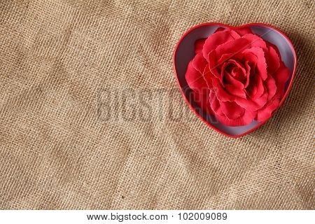 red rose in iron box