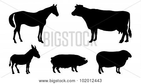 Animals Silhouettes. Horse, Cow, Donkey, Pig, Sheep.