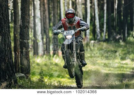 Enduro racer is riding on the rear wheel