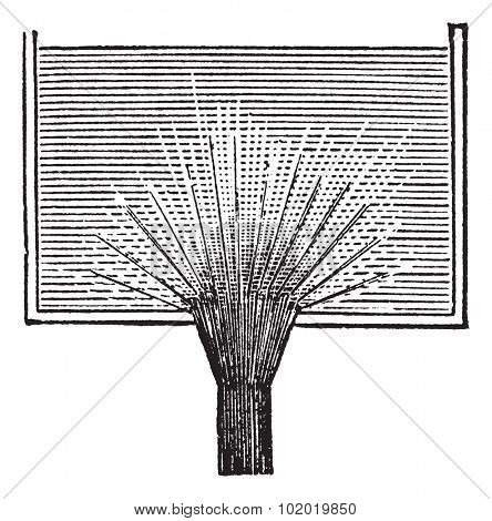 Vena contracta, vintage engraving. Old engraved illustration of Vena contracta. Trousset encyclopedia (1886 - 1891)